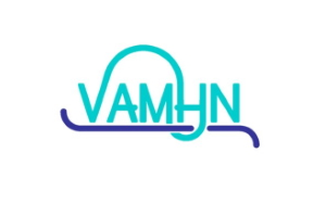 Early Career Researcher Grant Writing Workshop – VAMHN